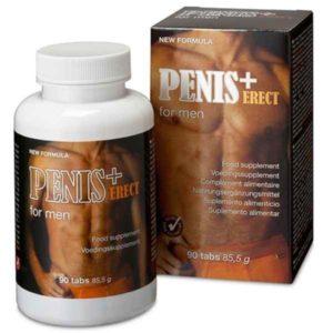 penis-erect