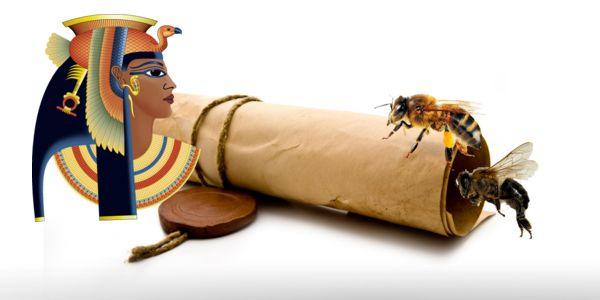 juguete-erotico-cleopatra